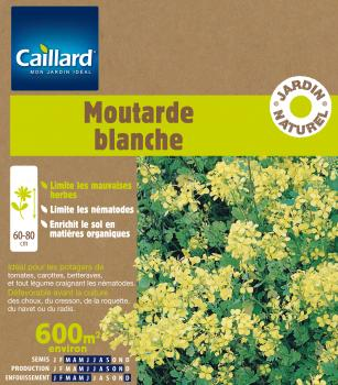 MOUTARDE BLANCHE 600 M2
