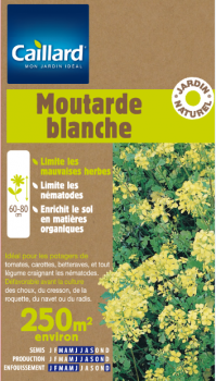 MOUTARDE BLANCHE 250 M2