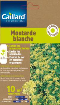 MOUTARDE BLANCHE 10 M2